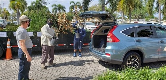 staff putting plants in cars