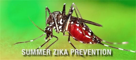 summer zika prevention
